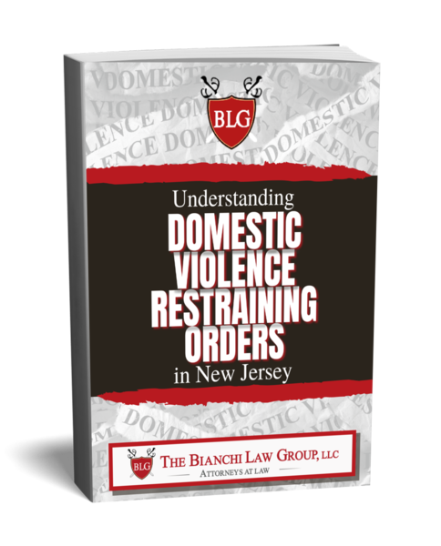 Domestic Violence book by The Bianchi Law Group, LLC